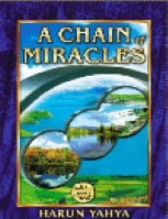 A CHAIN OF MIRACLES